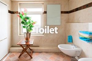 infraroodverwarming toilet