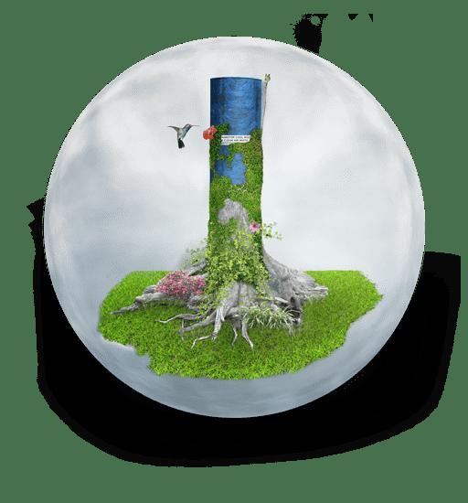natuurzuiverende dakbedekking